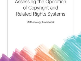 Operation of Copyright and Related Rights Systems